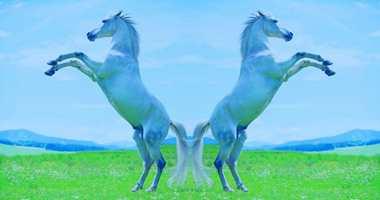 <b>HESTEKREFTER:</b> Cascos logo er skapt av selskapet grunnlegger. Han ønsket å vise egenskapene til produktet. Derfor vises to hester som et symbol på styrke.