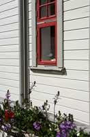 Det er ingen selvfølge at vinduer skal være hvite, og hvitt er ikke er en nøytral farge i denne sammenheng.  Foto: Nordsjö